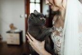 junge schöne Braut mit grauer Katze auf dem Arm