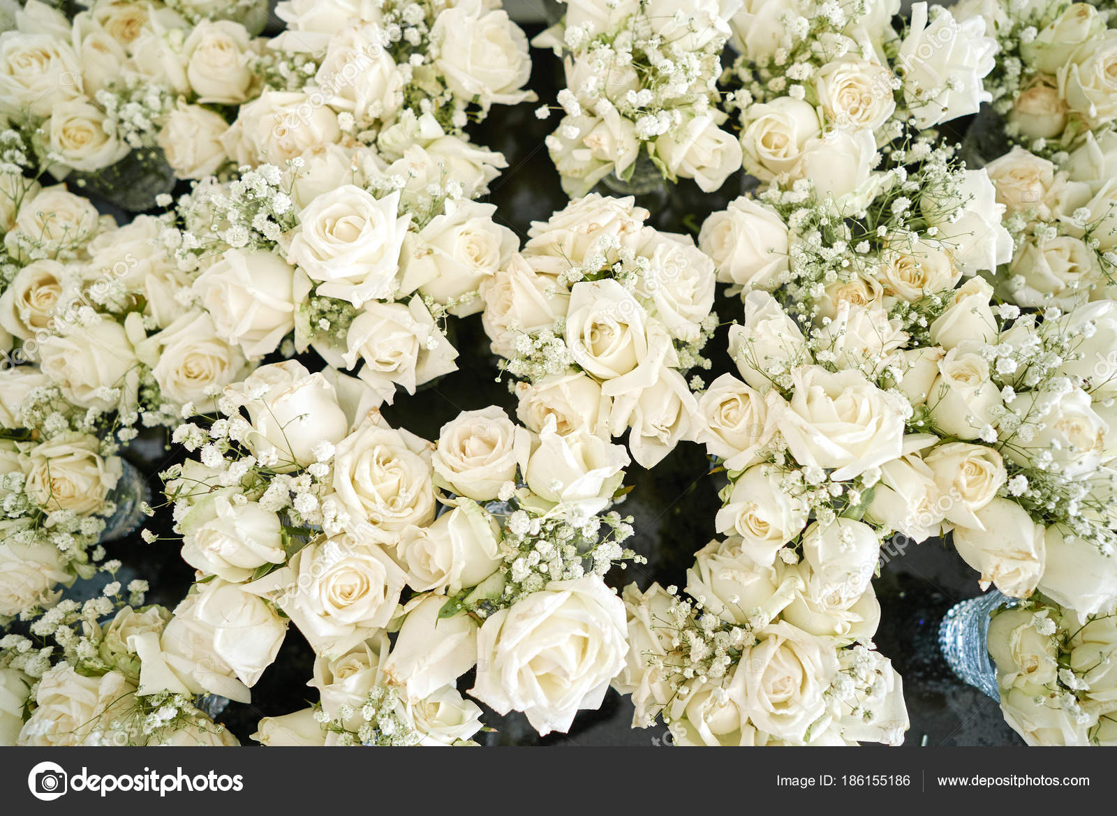 Bunch white cream roses baby breath gypsophila flowers floral a bunch of white and cream roses the babys breath gypsophila flowers floral for wedding venue decoration top view photo by mrseksan mightylinksfo