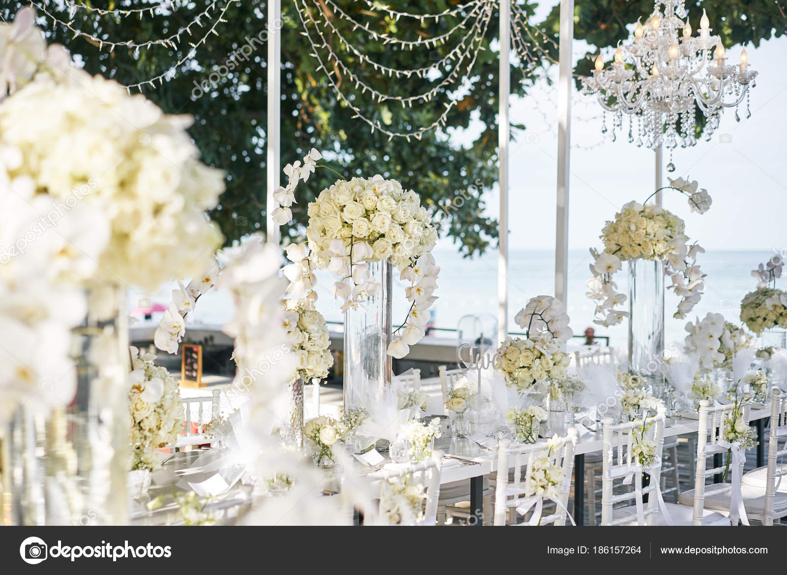 Wedding Venue Reception Dinner Table Decorated White Orchids White ...