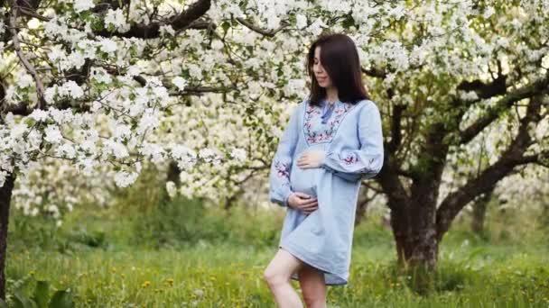 Těhotná žena odpočívá v květu jabloní