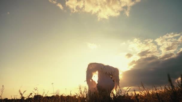 Bílý anděl se vztyčenými křídly hledí na oblohu