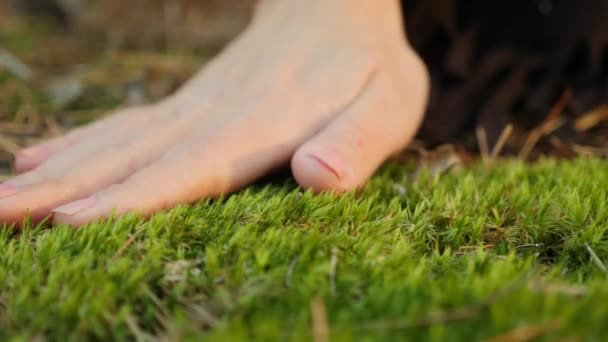 Female hand touching softly the moss on the ground