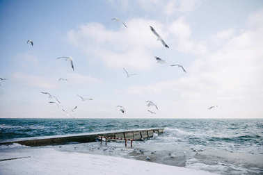 Pier on winter seashore with flying seagulls stock vector