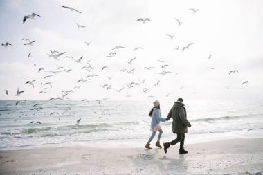 Young couple holding hands and walking on winter sea shore and looking at seagulls stock vector