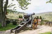 Fotografie eine historische alte Canon in Stromberg, Stromburg Deutschland
