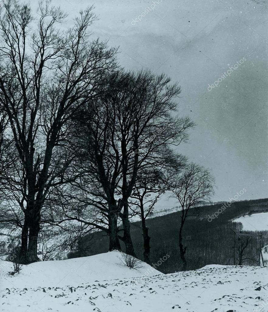 View of wintry countryside covered by snow