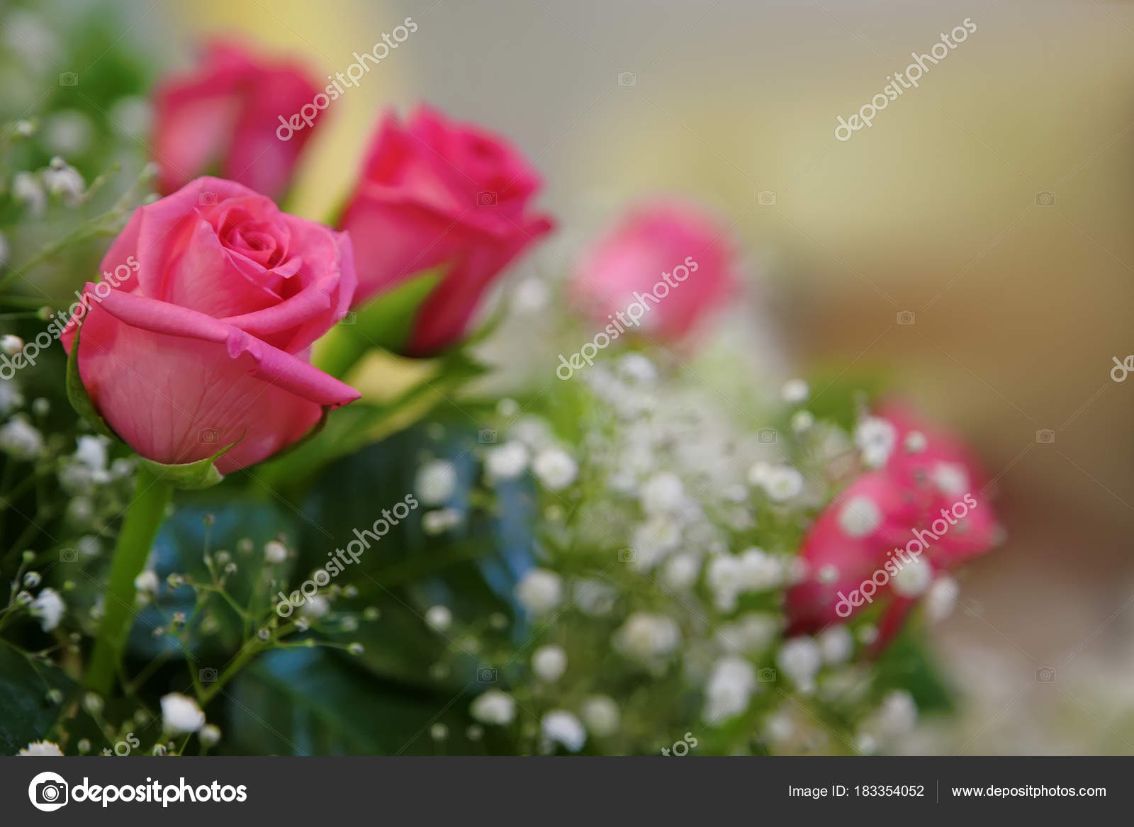 A Bouquet Of Roses With Small White Flowers Stock Photo