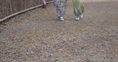 Beautiful Japanese women feet in kimono