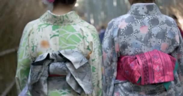 Gyönyörű lányok kimonó séta a bambusz erdő