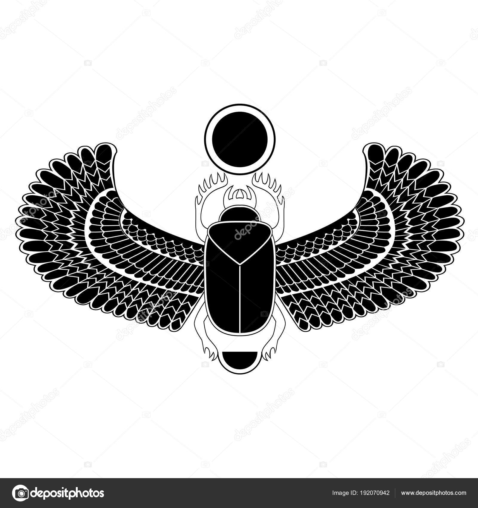 Black And White The Egyptian Sacred Bug A Scarab A Symbol Of The Sun