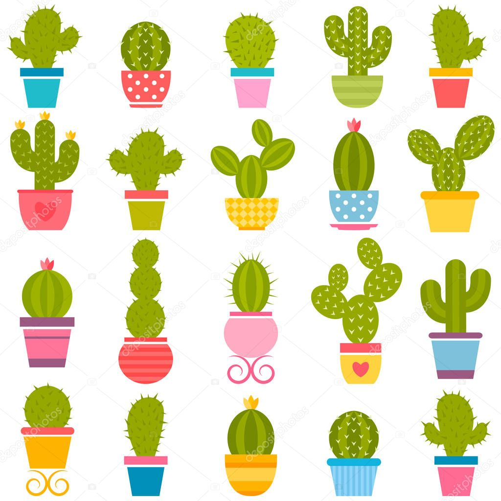 set of cactuses in the pots