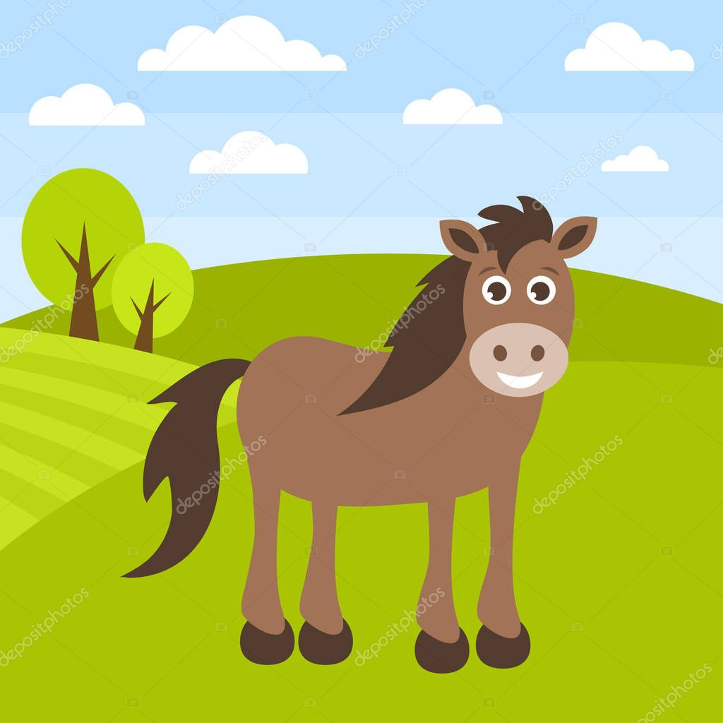 Cute brown horse on the grass field