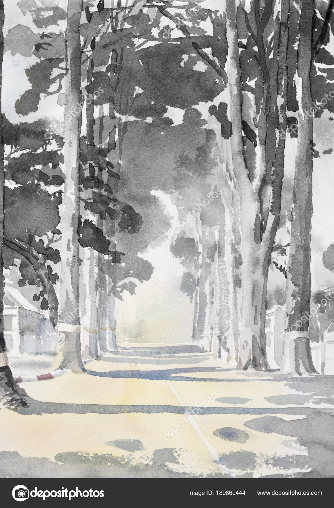 Aquarela Paisagem Pintura Cor Preto Branco De árvores De