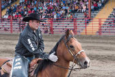 Williams Lake, British Columbia/Canada - July 1, 2016: man pats his horses neck during a quiet moment in the arena between competitions at the 90th Williams Lake Stampede.