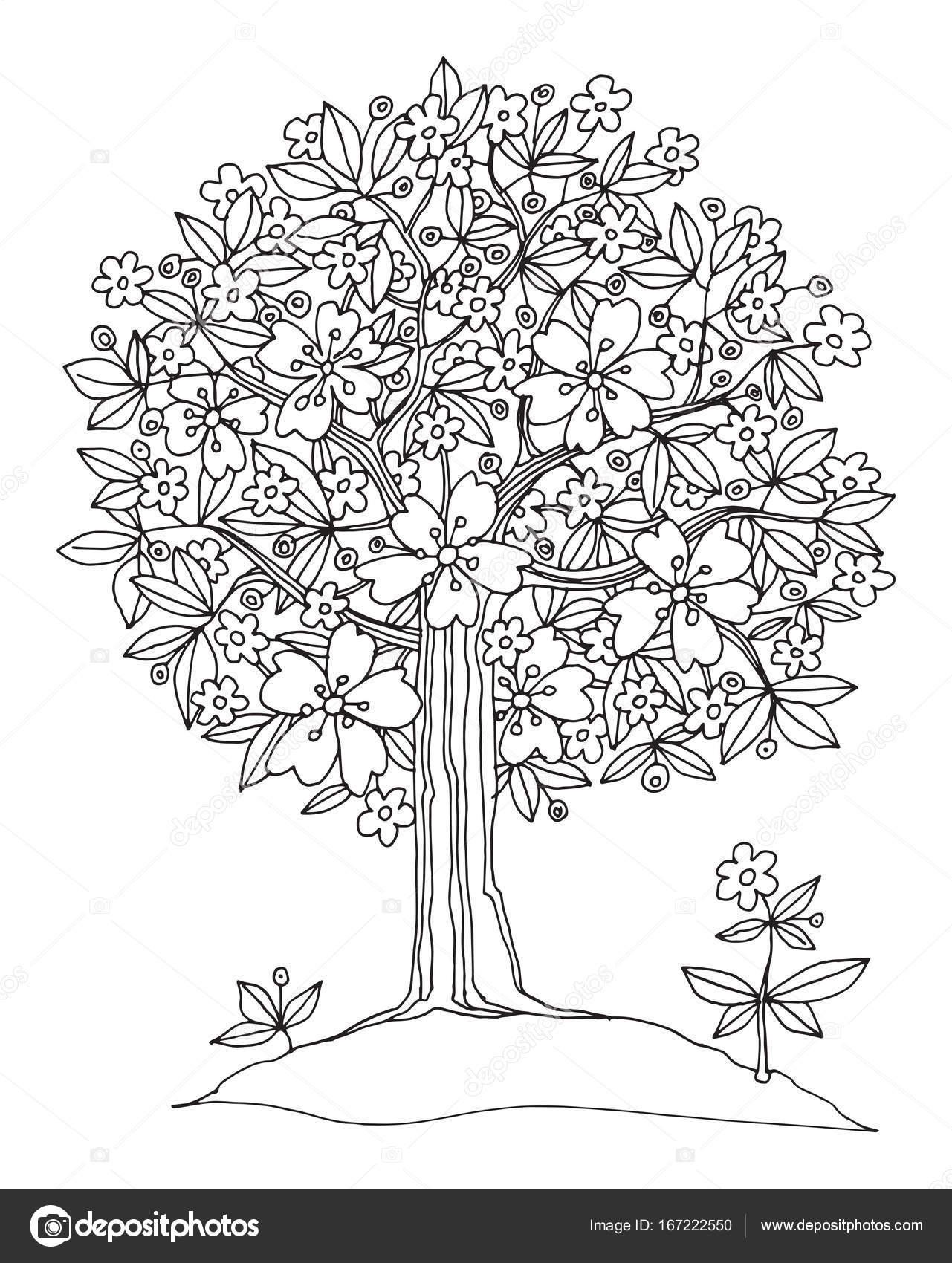 Imágenes Arbol Para Dibujar árbol Dibujado Mano Con Flores