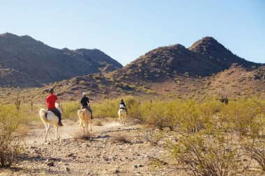 Unidentifiable people riding horses through Mountain View Park in Phoenix, Arizona