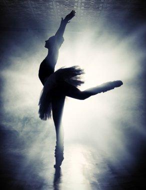 impression. Ballet concept.