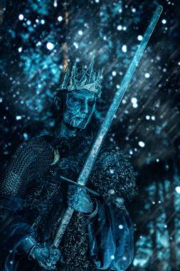 king in medieval armor