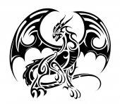 Fotografia disegno tatuaggio drago