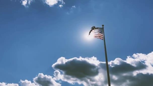 USA American Flag Pole