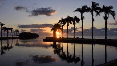 Cutler Bay Sunrise / Sunrise from Cutler Bay near Miami, Florida