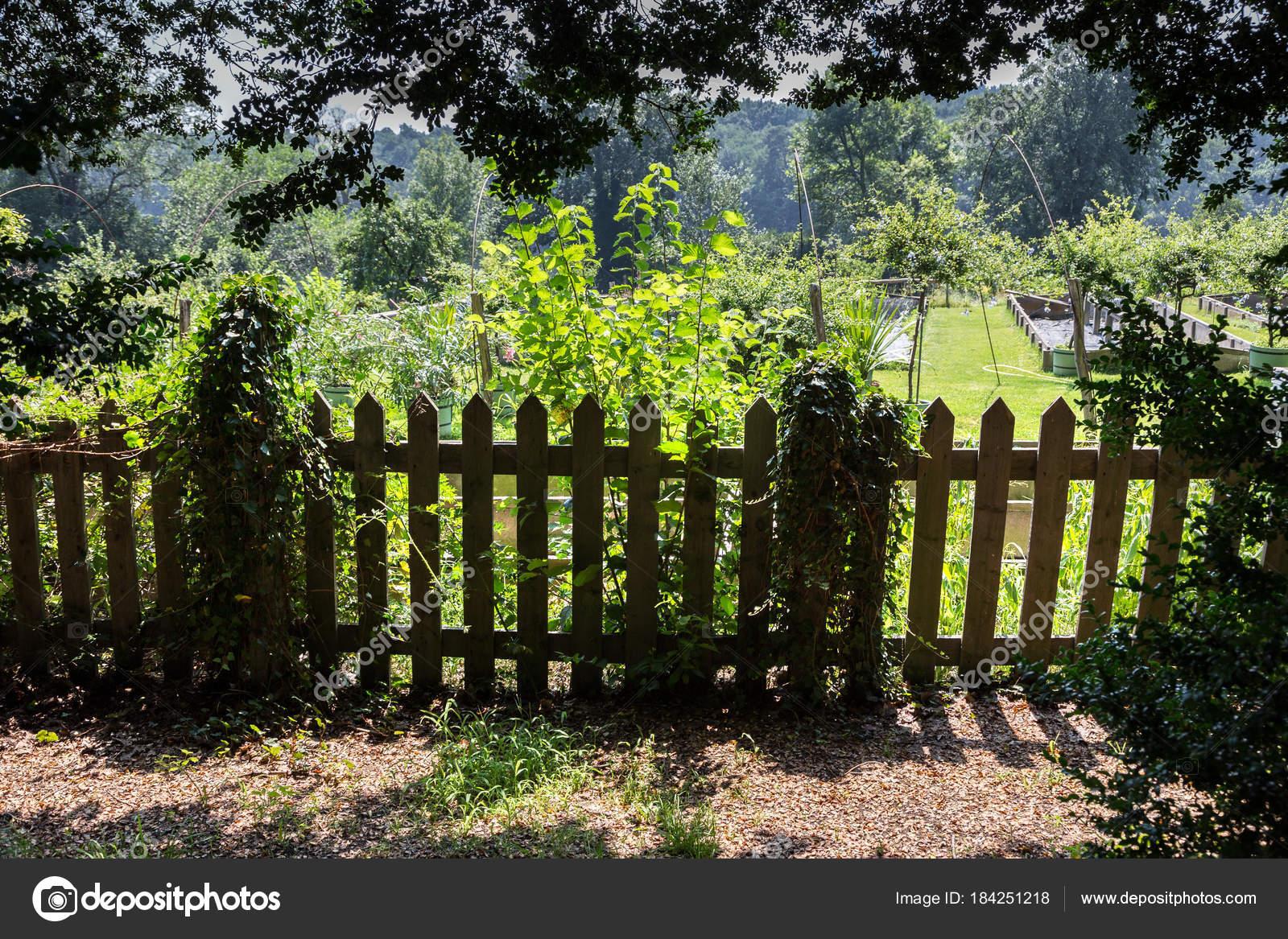 Doghe In Legno Per Cancelli : Vecchi cancelli legno doghe giorno tempo colore scattata u foto