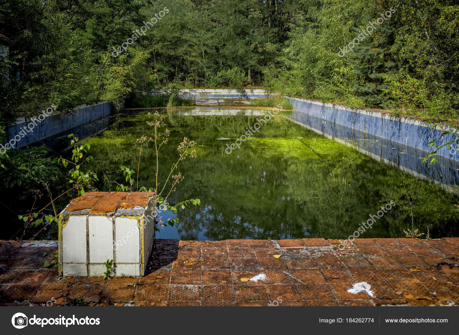 Old Abandoned Swimming Pool Sunny Day Stock Photo C Chromorange 184262774