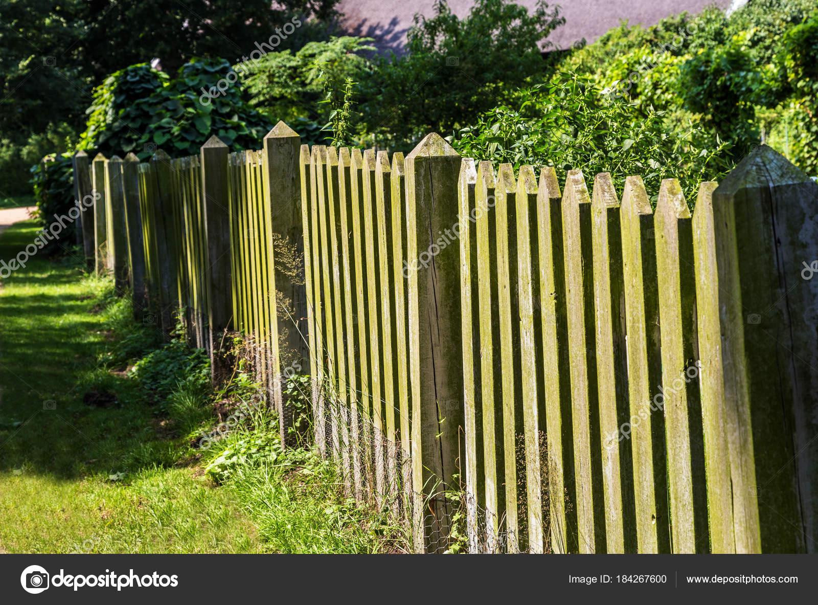Doghe In Legno Per Cancelli : Primo piano foto vecchi cancelli doghe legno u foto stock
