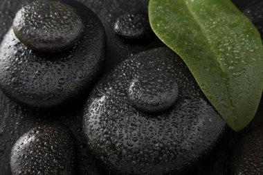 Hot Stones close up shot