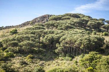 Amazing Mountains landscape shot