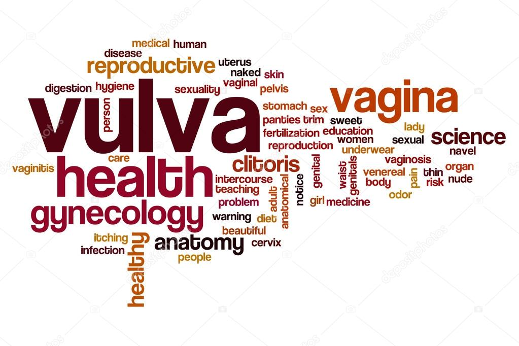 Vulva word cloud — Stock Photo