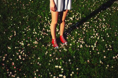 legs standing on lush grass with flowers