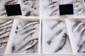 Jéggel kirakott friss hal a nagykereskedelmi piacon