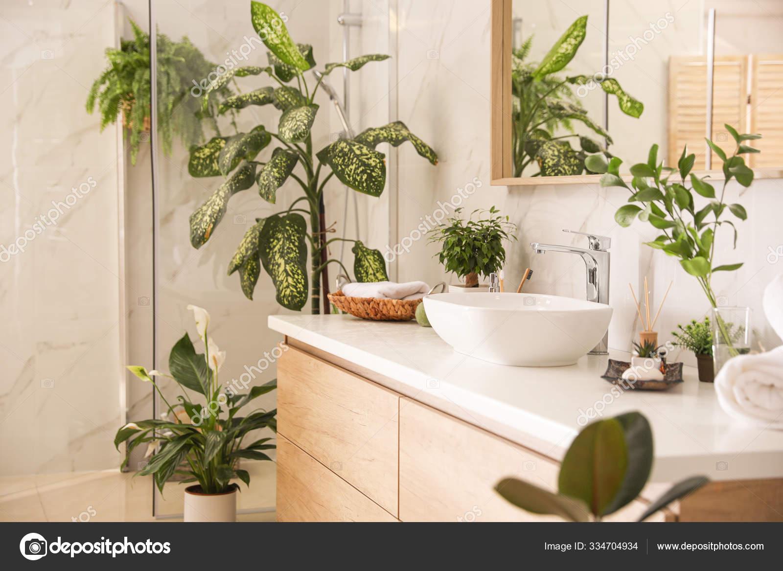 Beautiful green plants in elegant modern bathroom. Interior desi ...