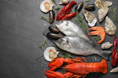 Fresh fish and different seafood on black table, flat lay. Space for text