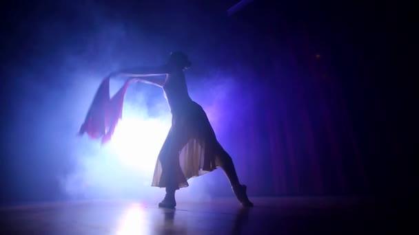 Classic Ballet Ballerina Dancing at Studio