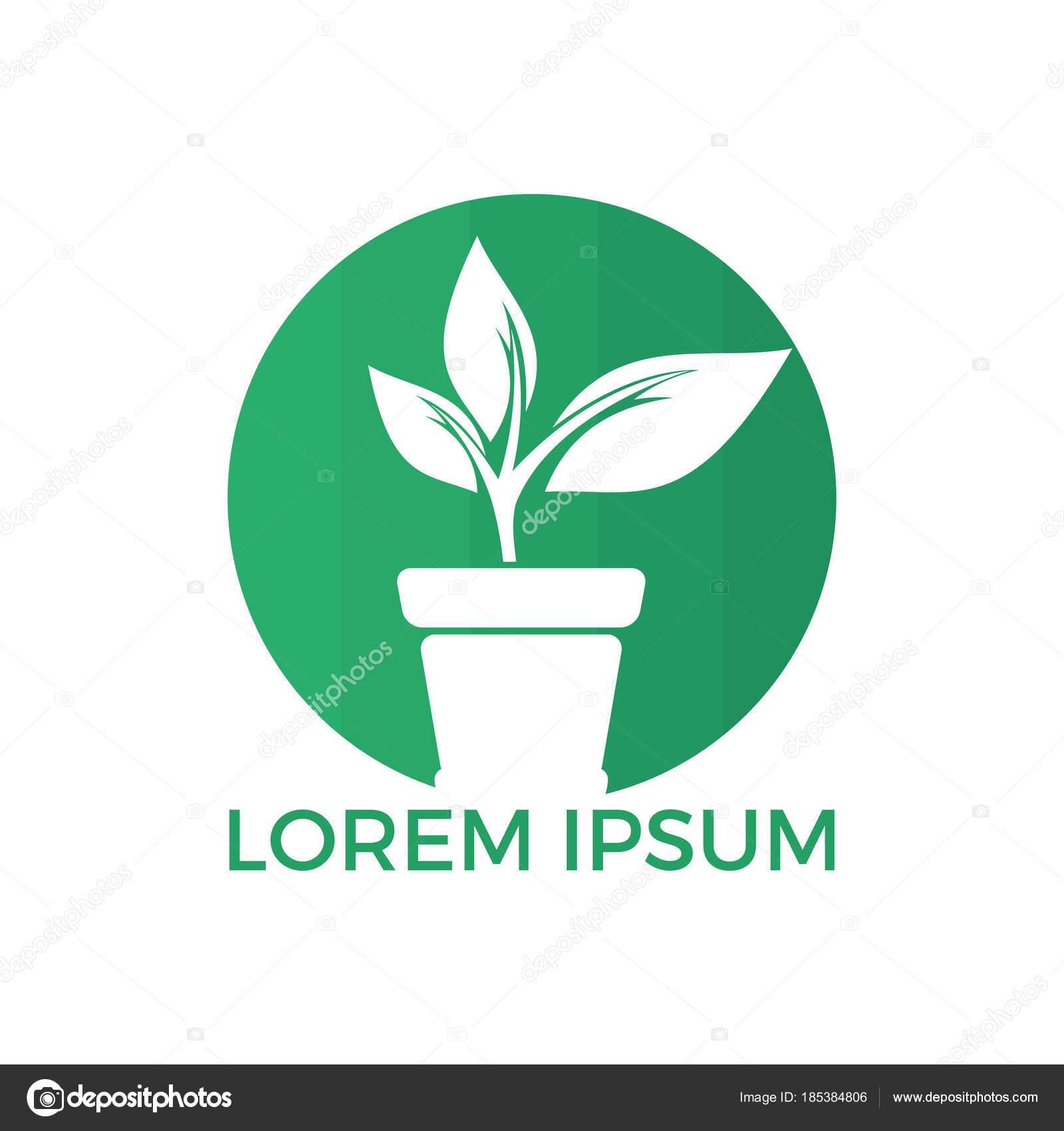 Pot Fleur Plantes Logo Creation Logo Vectoriel Croissance Image