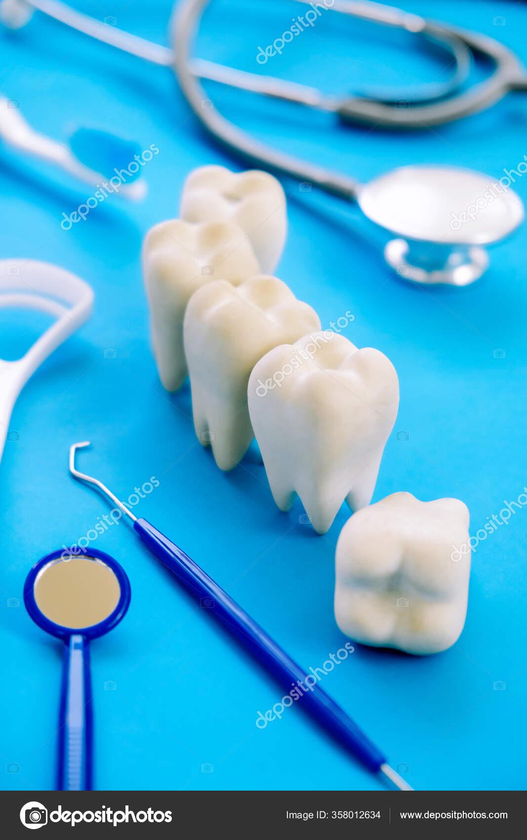 познавательные картинки в стоматологии сезон италии начинается