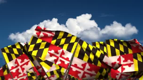 Waving Maryland State Flags