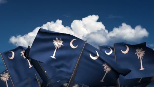 Waving South Carolina State Flags