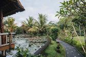 Fotografie Bali