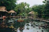 Fotografie Dřevěná lávka a krásné lotosové květy v rybníku v Hue, Vietnam