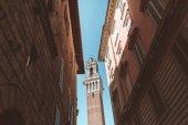věž v Sieně