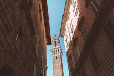 Tower in Siena