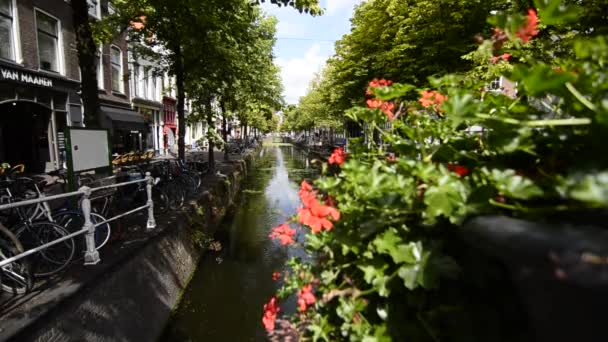 Delft, Holland - August, 2019: The charming and charming canals, crossed by small bridges adorned with planters. Close up on flowers.