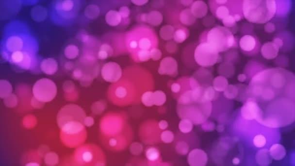 Broadcast Light Bokeh, Red Magenta Purple, Události, Loopable, 4k
