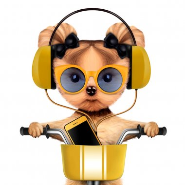 Adorable puppy with headphones sitting on bike