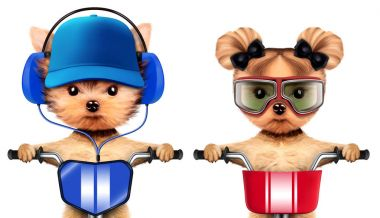 Adorable puppies with headphones sitting on bike