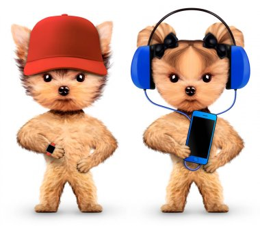 Funny dogs listening to music on headphones