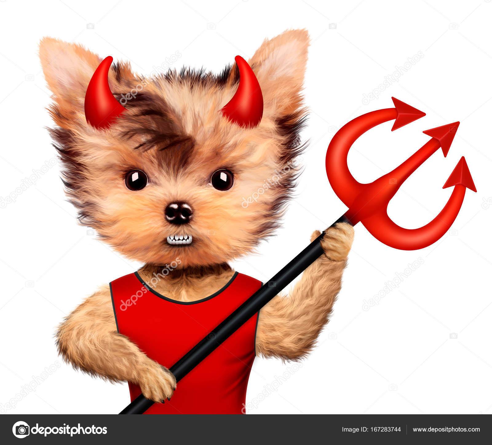 Animal dr le devil concept d halloween et le mal - Image halloween drole ...